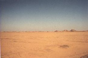 Some Desert